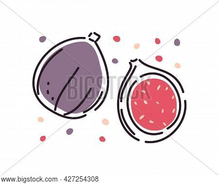 Juicy Figs Are Whole And Half. Set On A White Background. Abstract. Vector Illustration.