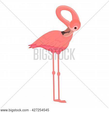 Fauna Flamingo Icon Cartoon Vector. Pink Tropical Bird. Summer Flamingo