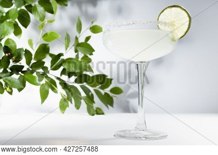 Tropical Summer Fresh Alcohol Muddy White Cocktail Margarita With Sugar Rim And Slice Lime With Gree