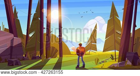 Hiker Man In Forest With Coniferous Trees, Stones And Mountains On Horizon. Vector Cartoon Illustrat