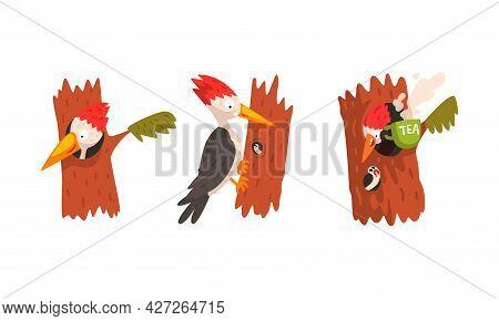 Cute Woodpecker Bird Sitting On Tree Trunk Set, Woodland Bright Woodpecker Cardinal Bird Cartoon Vec