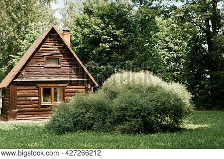 Wooden Country House From A Log In The Forest On A Sunny Summer Day. Exterior One Storey Cottage, Bu