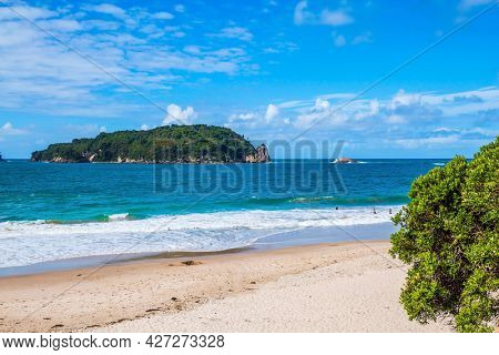 New Zealand, North Island. The road to Cathedral Cove. Ocean evening inflow. The concept of active, exotic, ecological and photo tourism