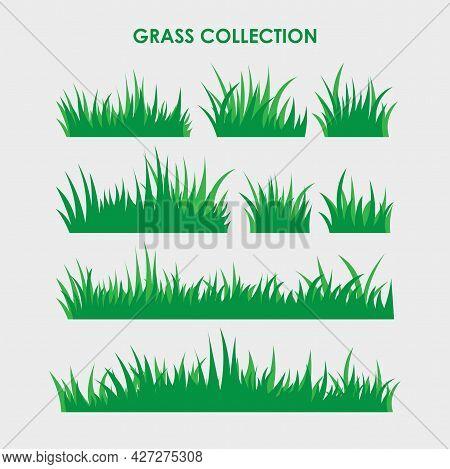 Simple Flat Green Grass Illustration Design, Green Grass Template Vector
