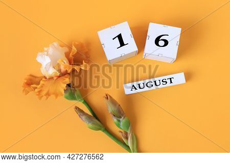 Calendar For August 16 : The Name Of The Month Of August In English, Cubes With The Number 16, Yello