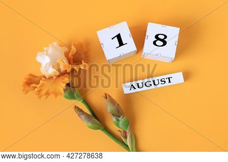 Calendar For August 18 : The Name Of The Month Of August In English, Cubes With The Number 18, Yello