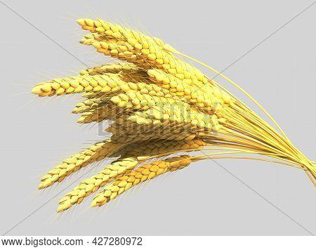 Goldish Wheat Bundle, Farm Harvest Isolated. Cgi Nature 3d Illustration