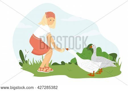 Young Woman Farmer Feeds Geese. The Girl Takes Care Of The Poultry. A Cute Girl Stands On A Green La