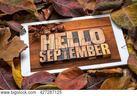 Hello September - word abstract in vintage letterpress wood type blocks on a digital tablet with dried leaves