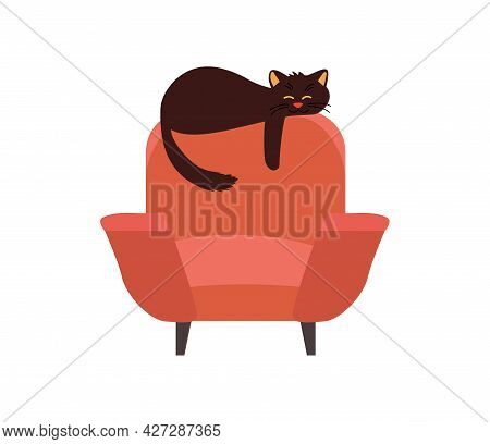 Brown Armchair With Black Cat Isolated On White. Concept Cozy Home.