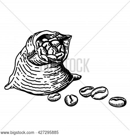 Hand Drawn Vector Illustration In Sketch Style. Ink Drawn. Bag Of Coffee Sketch