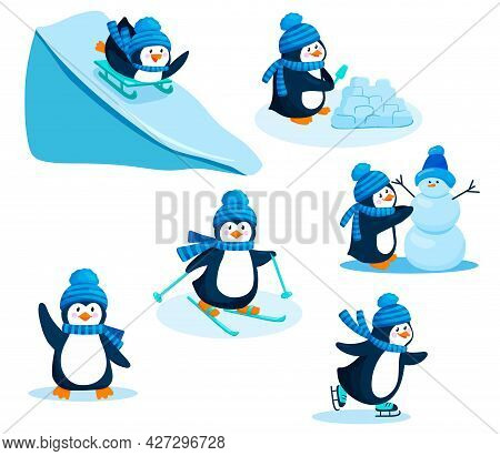 Activity In Winter. Penguin Vector Illustration Set. A Collection Of Cartoon Characters Of A Cute Pe
