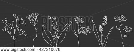 Wildflowers Banner. Line Flowers Poster. Template For Invitation To Wedding. Greeting Card With Plan