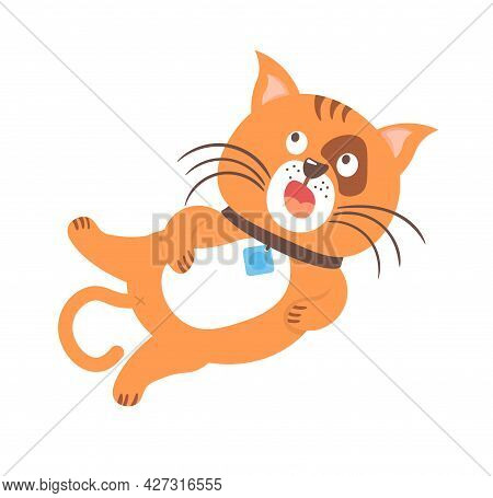 Cute Amusing Pets Kittens And Cat Characters.