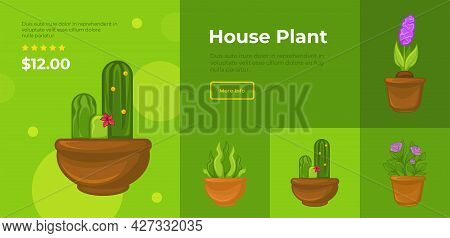 House Plant Website With Flowers, Shop Catalog