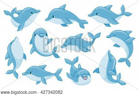 Dolphin Characters. Funny Dolphins Jump And Swim Poses. Oceanarium Show Mascot Underwater Animal. Ca