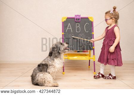 A Little Girl Teacher In A Dress And Glasses Teaches A Dog And Shows Her English Letters And How To