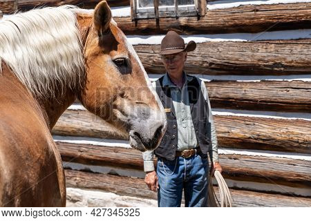 Deer Lodge, Montana - June 30, 2021: Horse At The Grant-kohrs National Historic Site Ranch, With A R