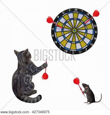 A Gray Cat With A Rat Are Playing Darts Together. White Background. Isolated.