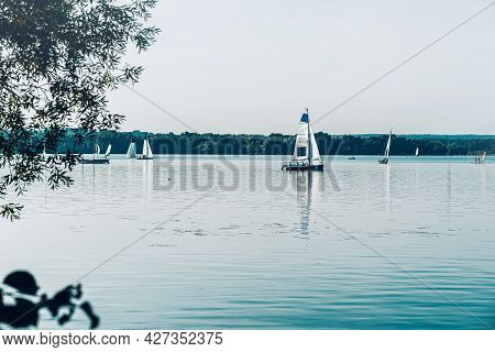 Scenic View Of Lake In Summer. White Sailing Yachts With White Sails Floating On Blue Water