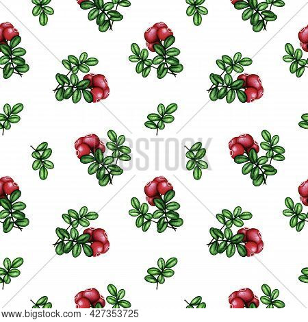 Watercolor Cowberry/cranberry Seamless Pattern. Red Forest Berries Bunch And Green Leaves On White.