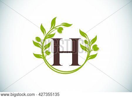 H.eps