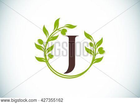 J.eps