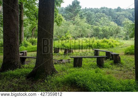 No People In This Image Of A Woodland Nature Retreat With A Circle Of Benches Around A Fire Pit Unde