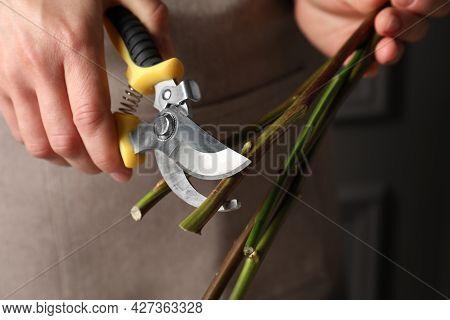 Florist Cutting Flower Stems With Pruner Indoors, Closeup
