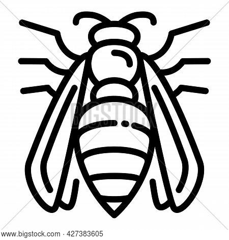 Agression Wasp Icon. Outline Agression Wasp Vector Icon For Web Design Isolated On White Background