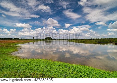 Landscape With Idyllic Lake, Nature In Summer With Cumulus Clouds