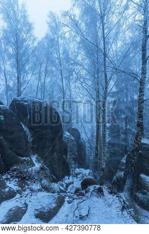 landscape in a nature reserve Broumovske steny, eastern Bohemia, Czech Republic