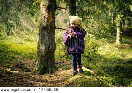Pretty Little Girl Collecting Fir Cones And Walking At Autumn Forest.