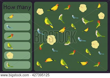 Kids Mathematical Mini Game - Count How Many Parrots And Tropical Florals - Australian King, Budgies