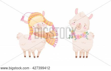 Cute Llama Or Alpaca Wearing Warm Knitted Hat And Scarf Vector Set