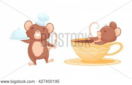 Cute Mouse Character Holding Tray With Served Dish And Bathing In Huge Cup Vector Set
