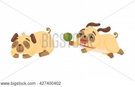 Cute Pug Dog Puppy Sleeping And Running After Ball Vector Set