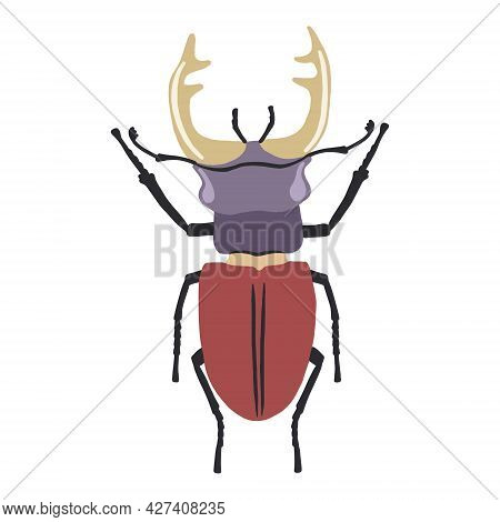 Vector Illustration Of A Colored Stag Beetle, Isolated On A White Background