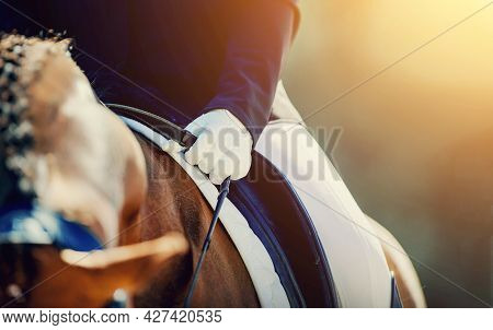 A Rider's Hand In A White Glove With A Rein. Pigtails On Neck Sports Horse. Horse Ears And Braided B
