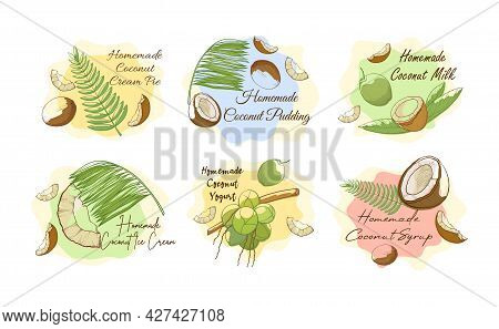 Collection Homemade Coconut Preparation Vector Advertising Labels With Recipe For Cooking Exotic Nut