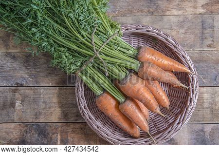 Freshly Picked Carrots, With Greens. Harvest Of Vegetables On A Tray. Orange Carrot From The Bed, On