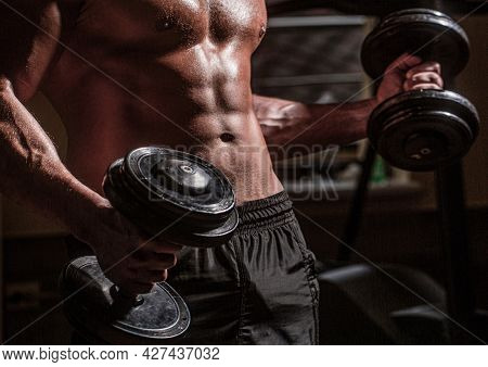 Abs And Biceps. Muscular Man With Dumbell. Strong Bodybuilder In The Gym. Muscular Man On Gym Backgr