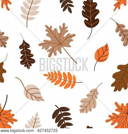Pattern With Fallen Leaves On A White Background