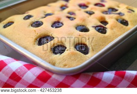 Closeup Delectable Fresh Baked Homemade Blueberry Cake In Baking Pan