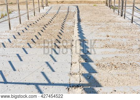 The Staircase Is Wide, Concrete Yellow Steps Down, Metal Fence, Sunny Day, Without People