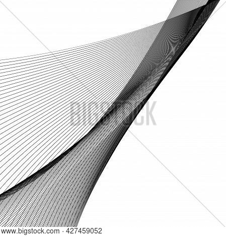 Abstract Black Line Grey Wave Gray Band On White Background Vector