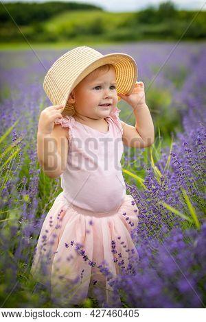 Smiling Baby Girl In Pink Dress In A Lavender Field, Czech Republic