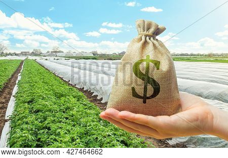 Money Bag In Hand On Farm Field Background. Lending And Subsidizing Farmers. Grants And Financial Su