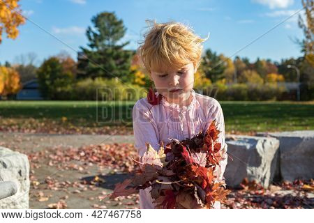 Child Playing With Leaves In Autumn During Warm Bright Sunny Day In Public Local Park