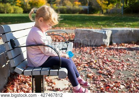 Child Playing With Leaves In Autumn During Warm Bright Sunny Day In Local Park